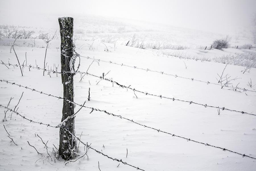 Fence Photograph - Stark Realities Of Winter by John Haldane