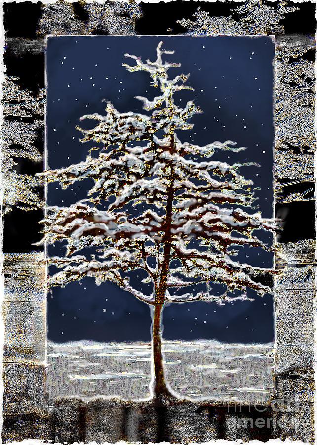 Ursula Freer Digital Art - Starlight by Ursula Freer
