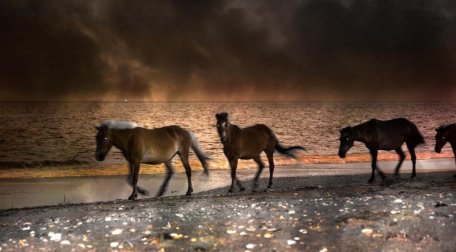 Beach Photograph - Starry Night Beach Horses by Betsy Knapp