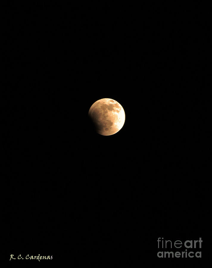 Sky Photograph - Start Of The Blood Moon 2 by Rebecca Christine Cardenas