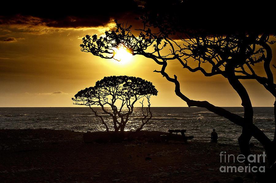 Landscape Photograph - State Park Sunset by Karl Voss