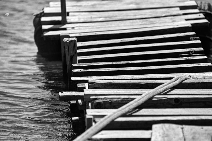 Black And White Photograph - Stay by Taylan Apukovska