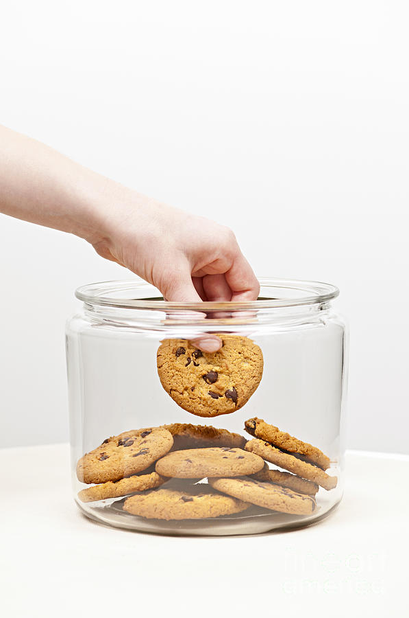 Hand Photograph - Stealing Cookies From The Cookie Jar by Elena Elisseeva
