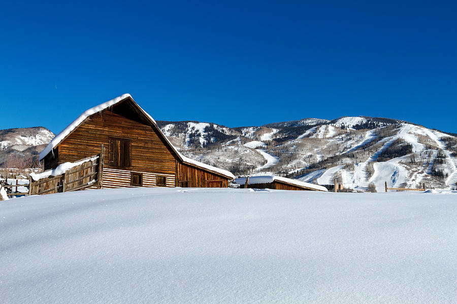 Champagne Powder Photograph - Steamboat Springs Barn by Teri Virbickis