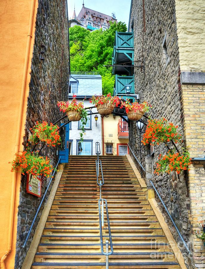 Steps Of Old Quebec Photograph - Steps Of Old Quebec by Mel Steinhauer