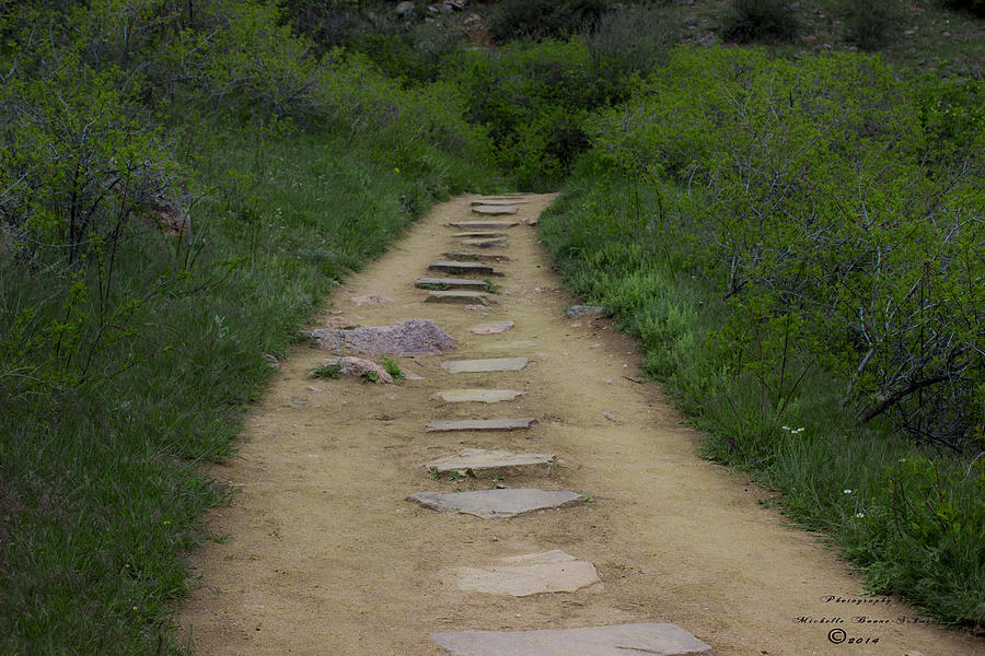 Stepping Stones Photograph - Steps Through Nature by Missy Boone