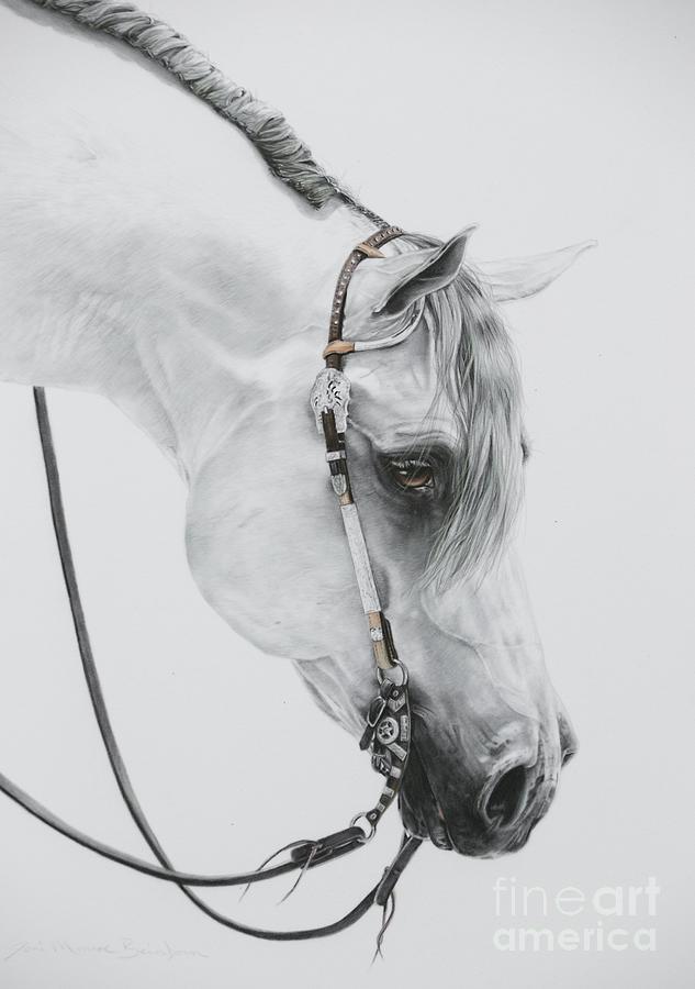 Grey Horse Pastel - Sterling by Joni Beinborn
