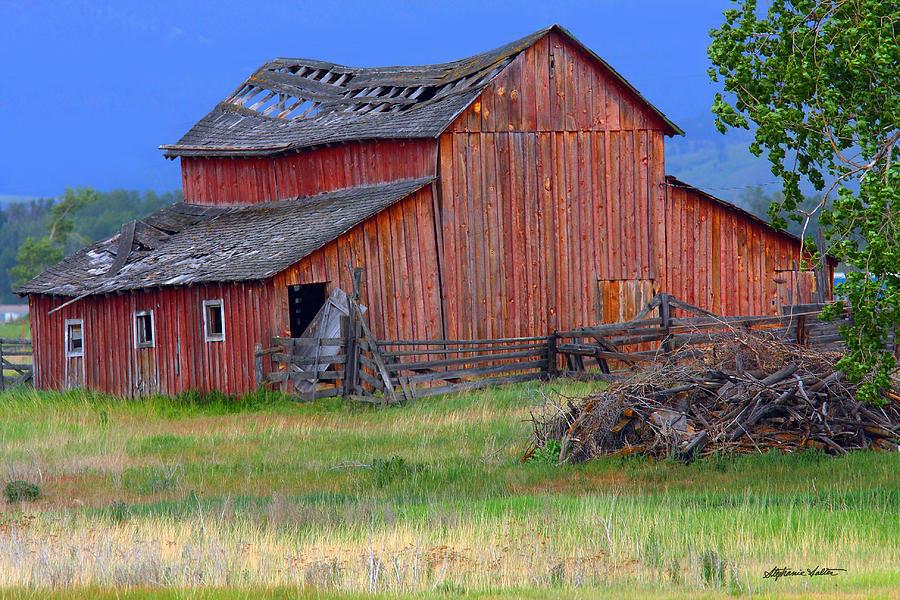 Stevensville Barn by Stephanie Salter