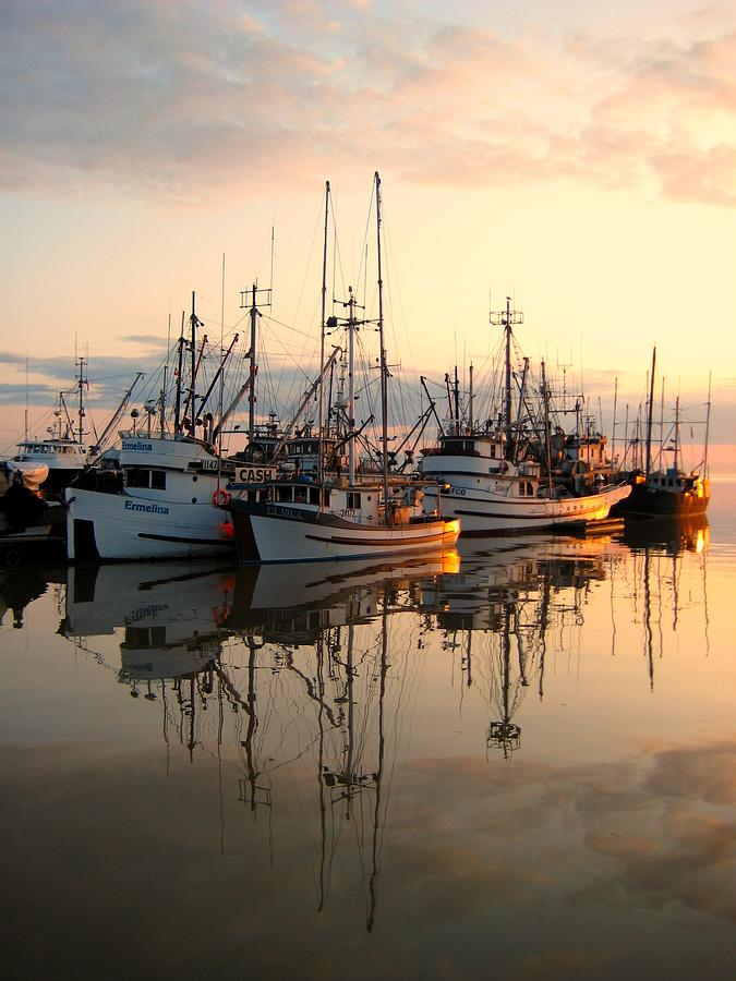 Sea Photograph - Steveston Harbour by Shirley Sirois