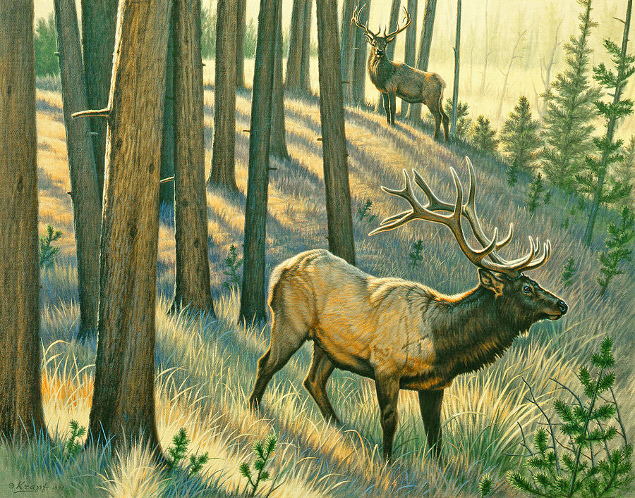 Wildlife Painting - Still Champiion by Paul Krapf