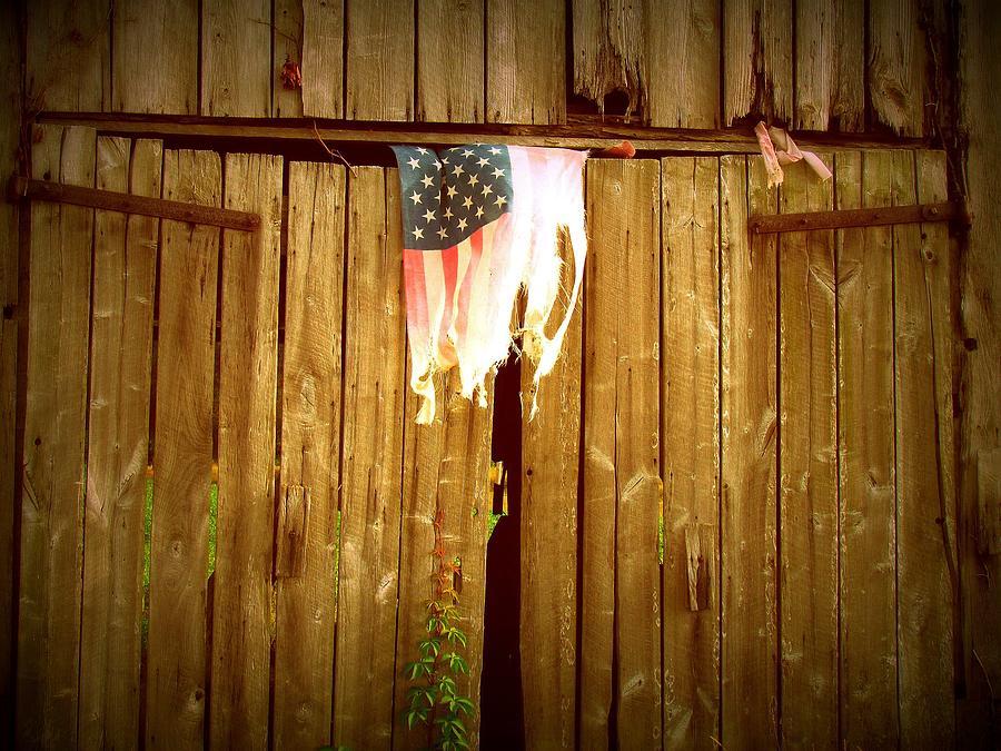 Still Hangin Photograph by Trish Clark