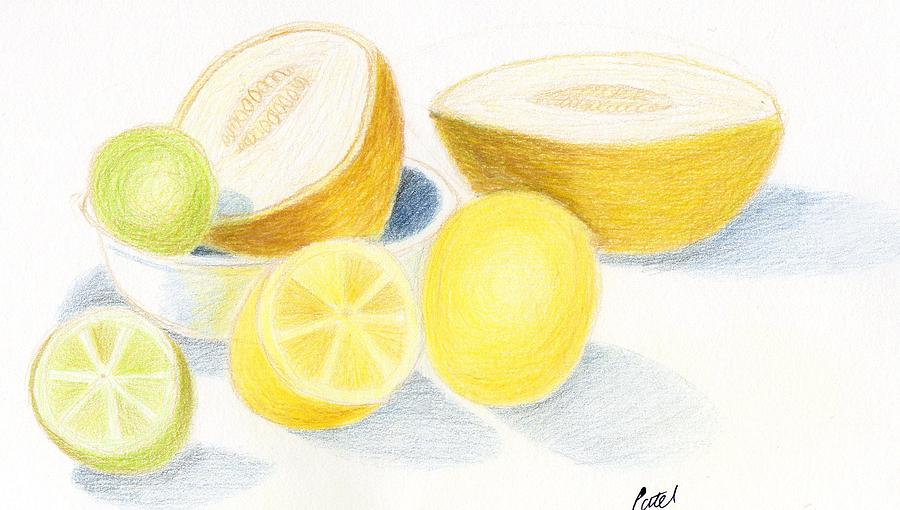 Citrus Drawing - Still Life - Citrus Fruit With Melons by Bav Patel