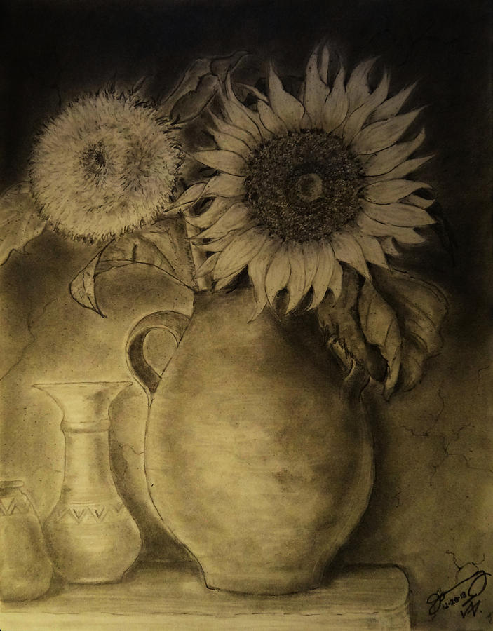 Still Life Clay Pot With Two Sunflowers Drawing