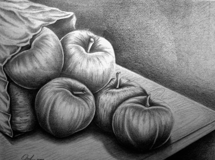 Apples Drawing - Still Life Drawing by Owen Lafon