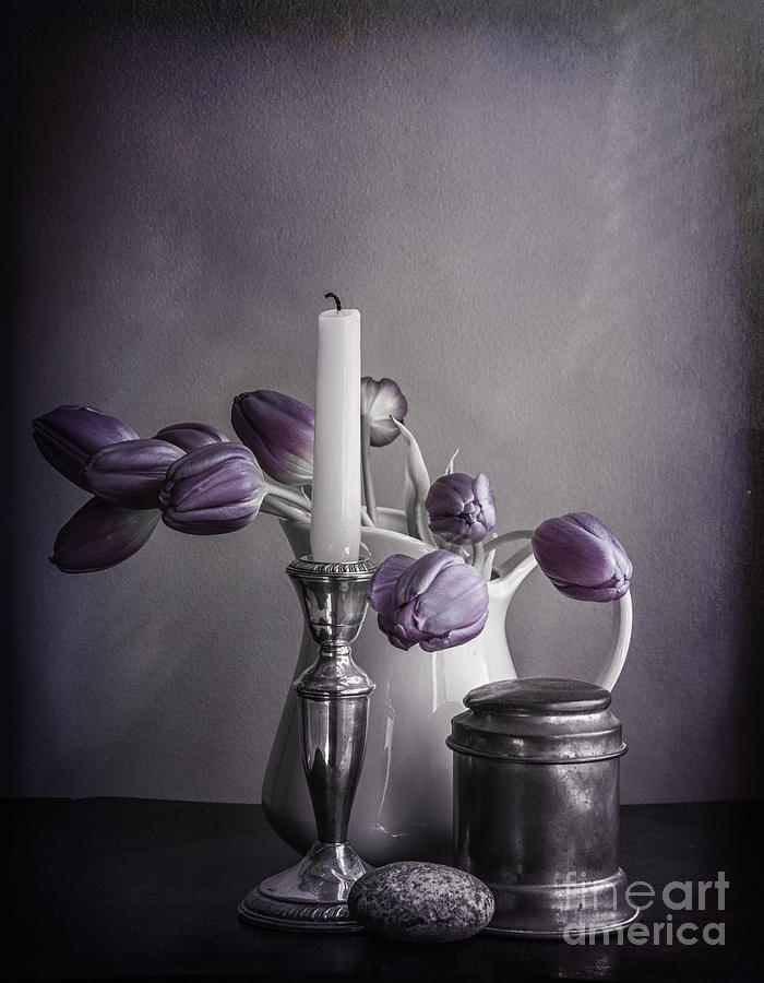 Jug Photograph - Still Life Study In Purple by Terry Rowe