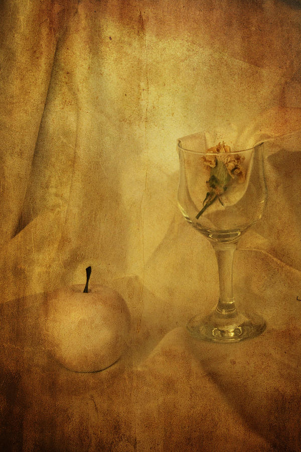 Decoration Photograph - Still Life  by Svetoslav Sokolov