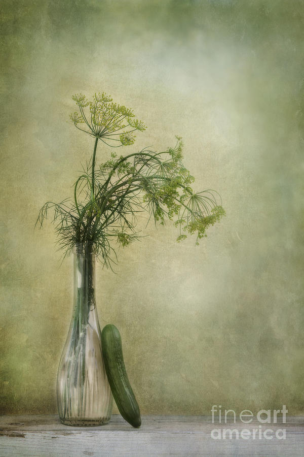 Dill Photograph - Still Life With Dill And A Cucumber by Priska Wettstein