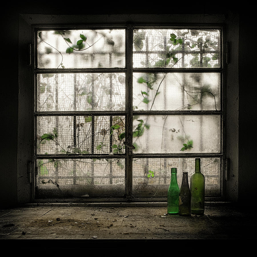 Still Life Photograph - Still-life With Glass Bottle by Vito Guarino