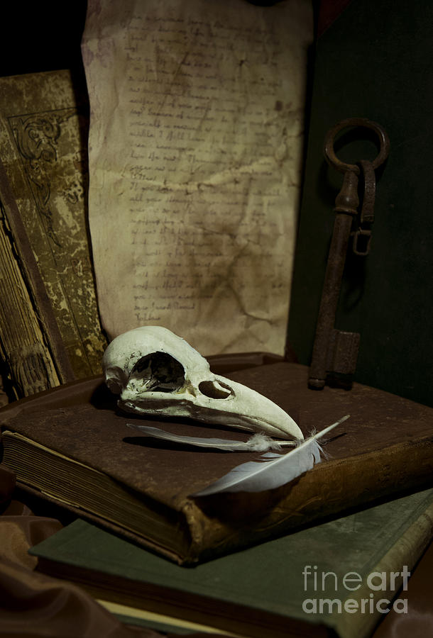 Still Life Photograph - Still Life With Old Books Rusty Key Bird Skull And Feathers by Jaroslaw Blaminsky