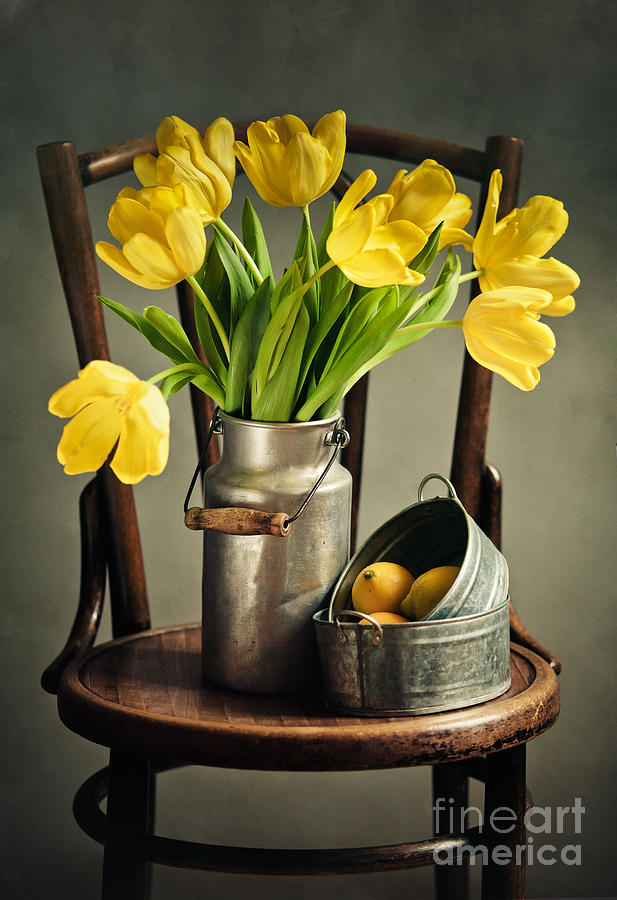 Tulip Photograph - Still Life with Yellow Tulips by Nailia Schwarz