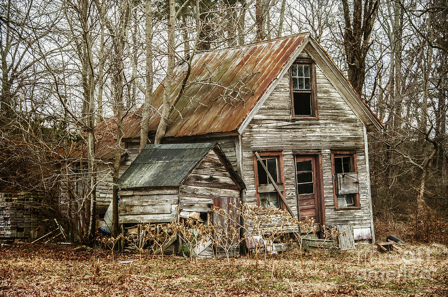 House Photograph - Still Standing by Terry Rowe