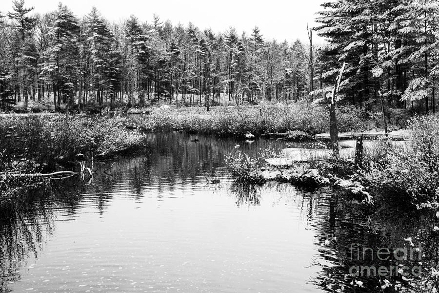 Water Photograph - Still Waters by Sue OConnor