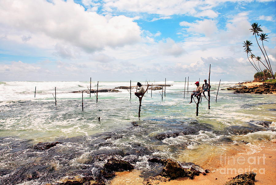 Stilt fishermen by Paul Cowan