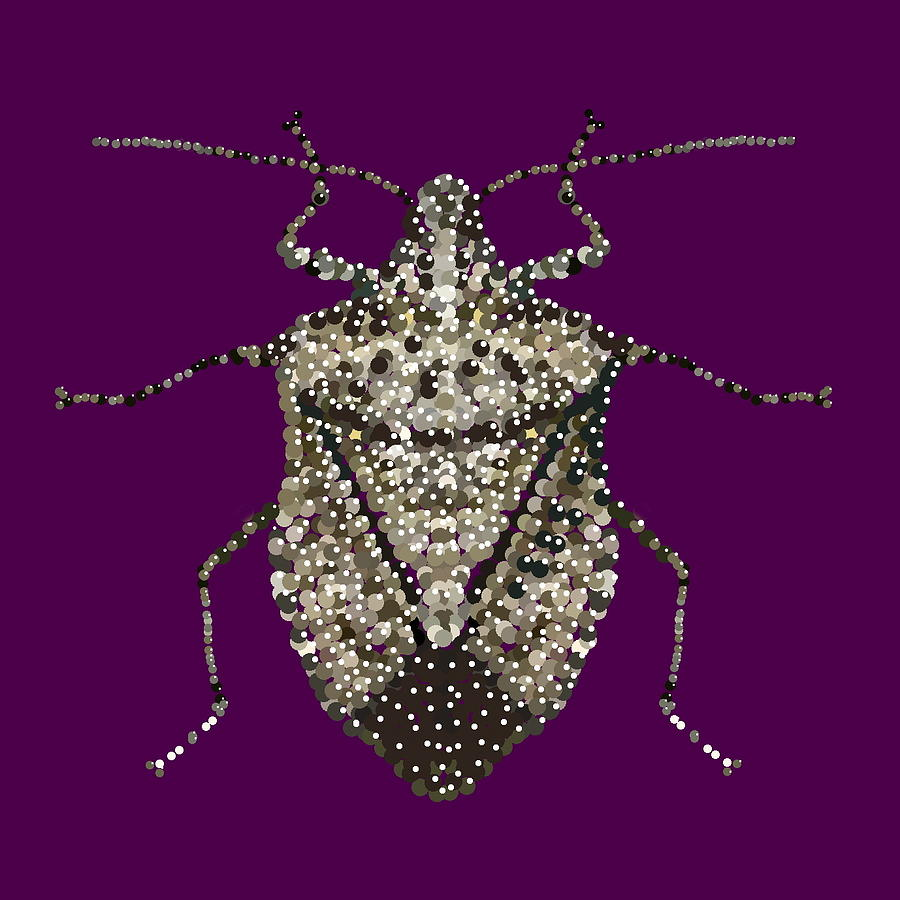Stink Bug Digital Art - Stink Bug Bedazzled by R  Allen Swezey