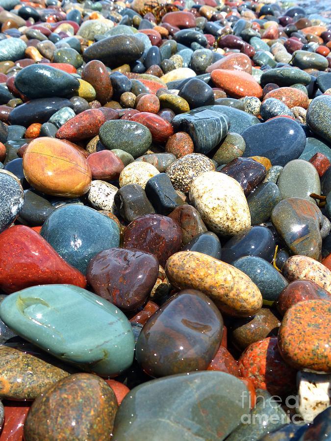 Stone Beach at Herring Cove Roosevelt Campobello International Park by Christine Stack