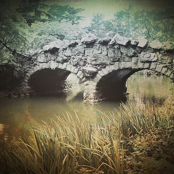 Bridge Photograph - Stone Bridge by Jill Battaglia