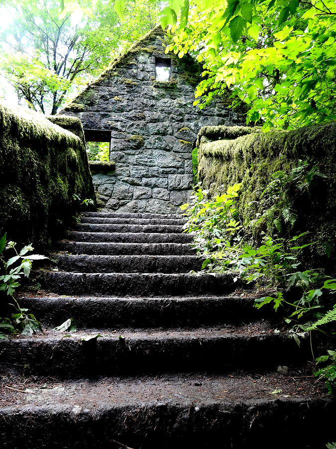 Stone House Photograph - Stone House Stairs by Lizbeth Bostrom