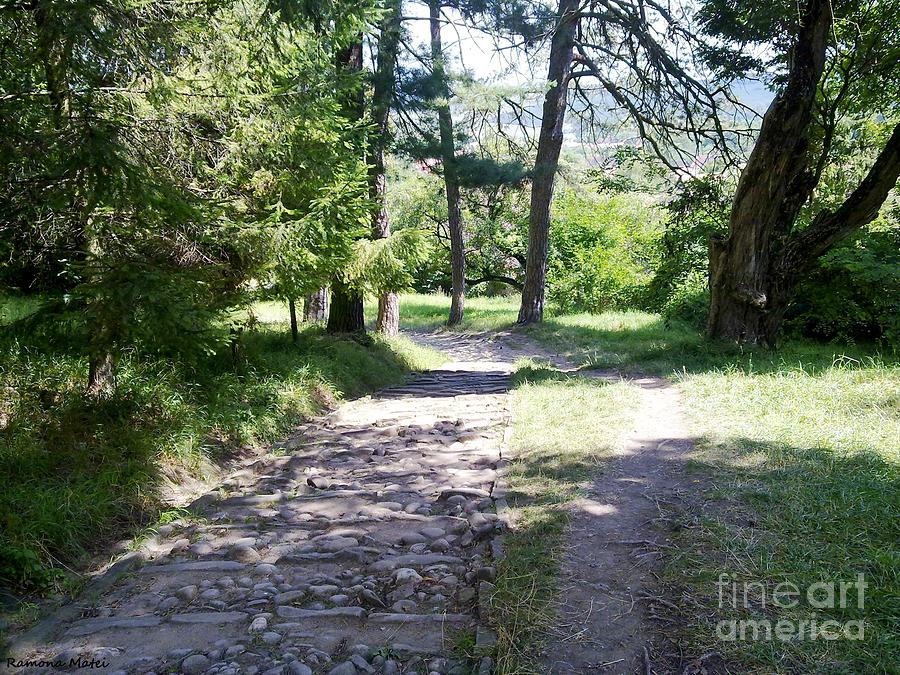 Peace Photograph - Stone Path by Ramona Matei