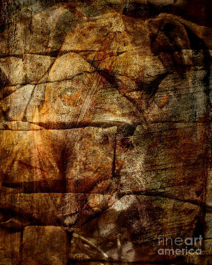 Dog Digital Art - Stone Wall by Judy Wood