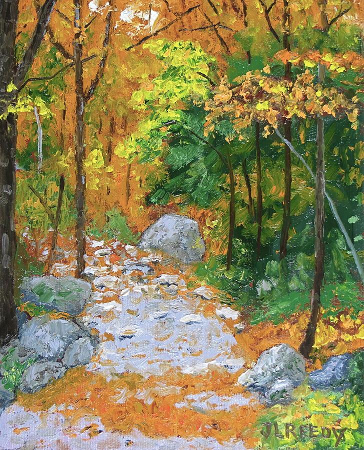 Stoney Path by J Loren Reedy
