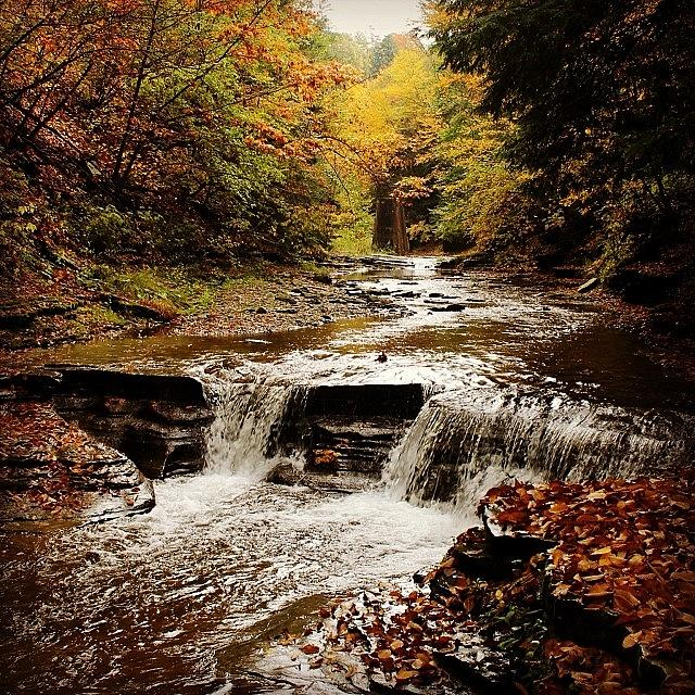 Stony Brook Photograph - Stony Brook Gorge by Justin Connor
