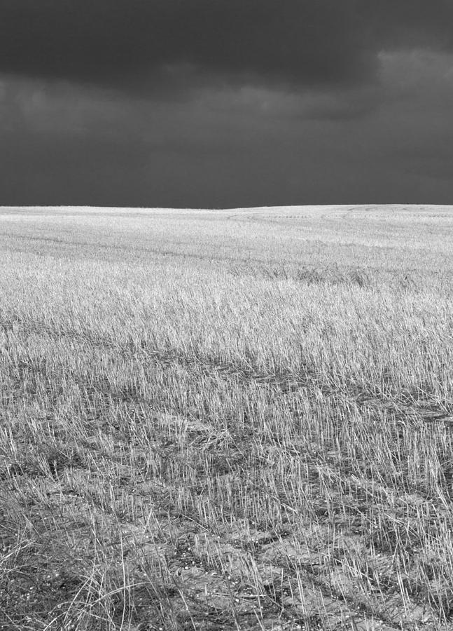 Black And White Photograph - Storm On The Stubble by Gordon  Grimwade