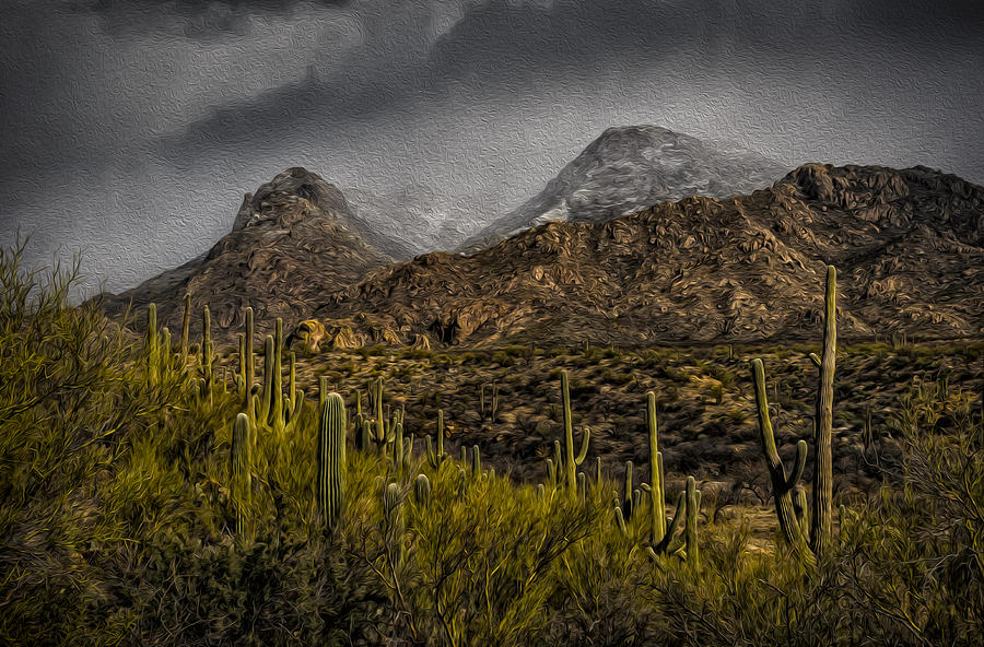 Storm Over Catalinas Aso Photograph