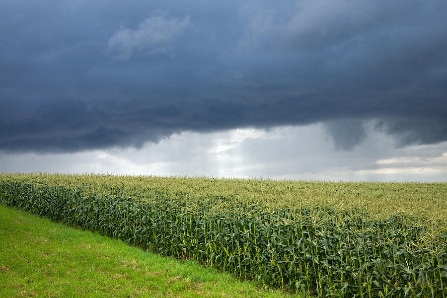 Corn Photograph - Storm Over Cornfield In Southern Germany by Ian Middleton