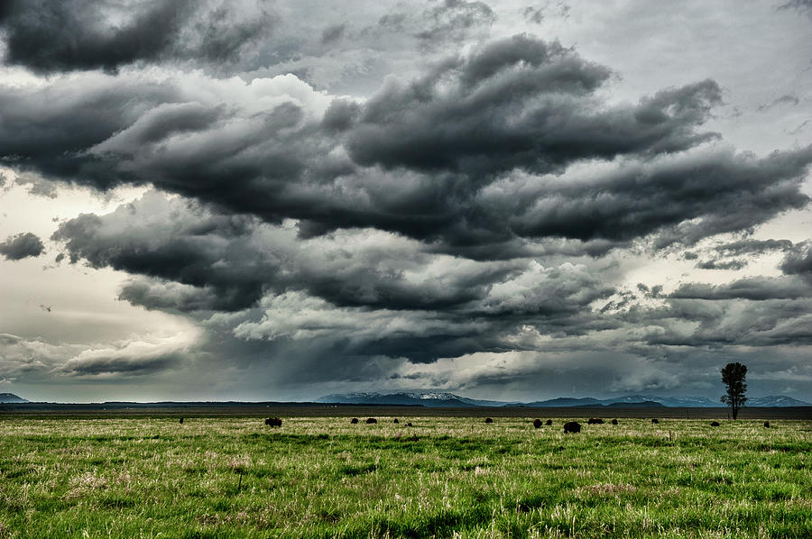 Storm Over Jackson Hole Valley Photograph by Jeff R Clow