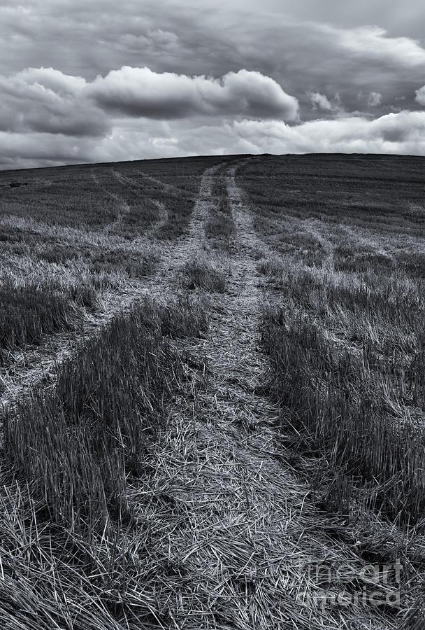 Tracks Photograph - Storm Tracks by Mike  Dawson