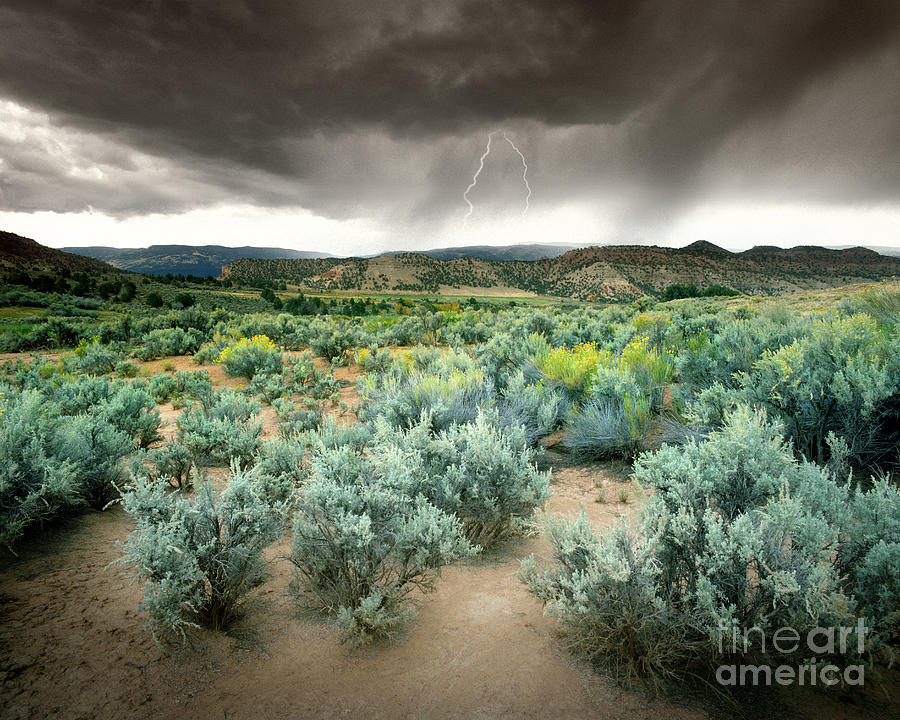 Usa Photograph - Storms Never Last by Edmund Nagele