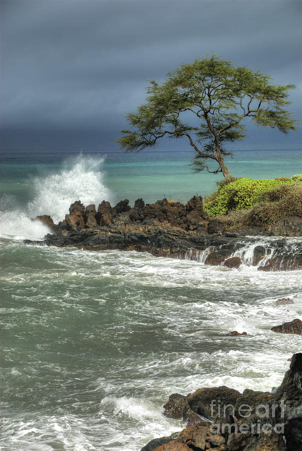 Waterscape Photograph - Stormy Maui Morning by Sandra Bronstein