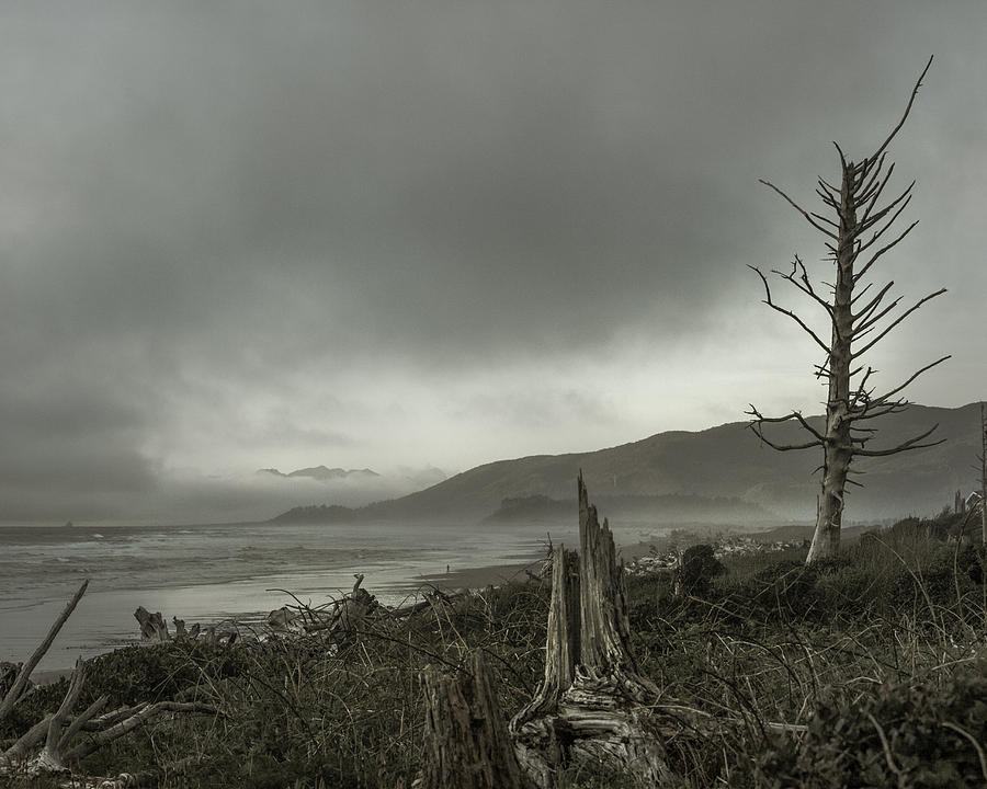 Landscape Photograph - Stormy Oregon Coast by Shawn St Peter