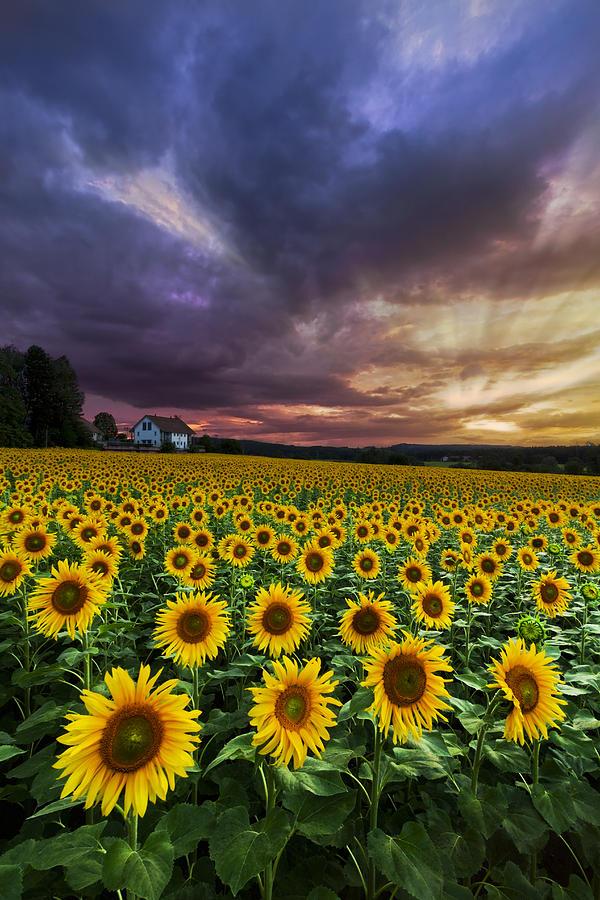Appalachia Photograph - Stormy Sunrise by Debra and Dave Vanderlaan