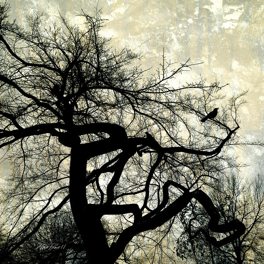 Tree Photograph - Stormy Weather  by Ann Powell