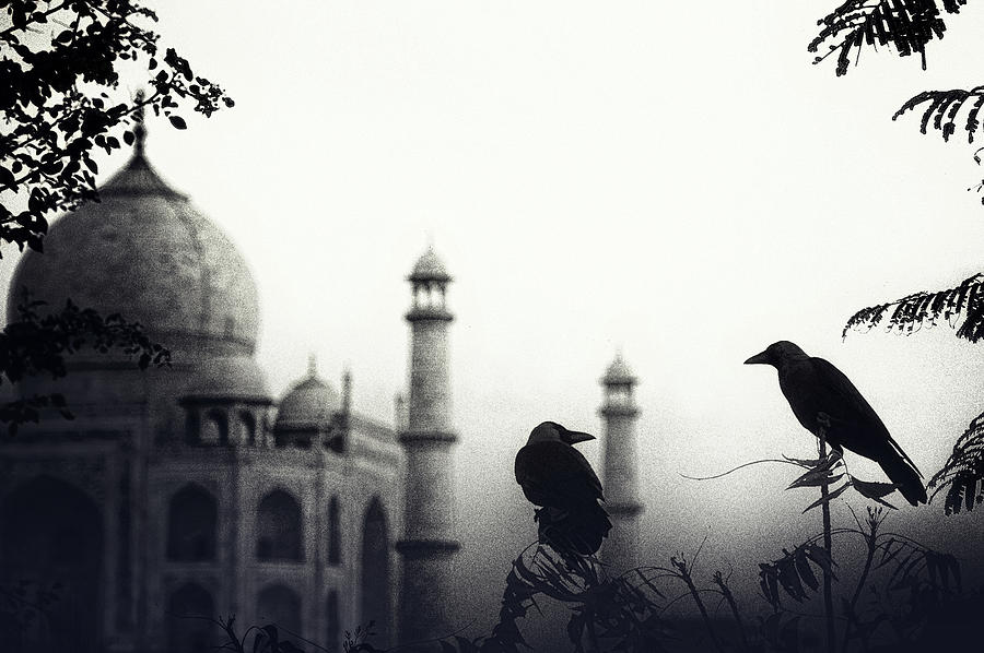 India Photograph - Story About 2 Lovers by Piet Flour
