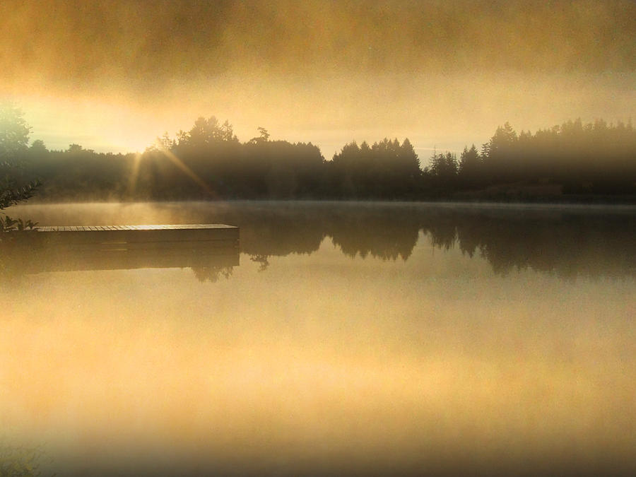 Sunny Photograph - Stowell Lake On Salt Spring Island by Lyn  Perry