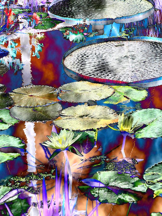 Abstract Photograph - Strange Daze by Bobbie Barth