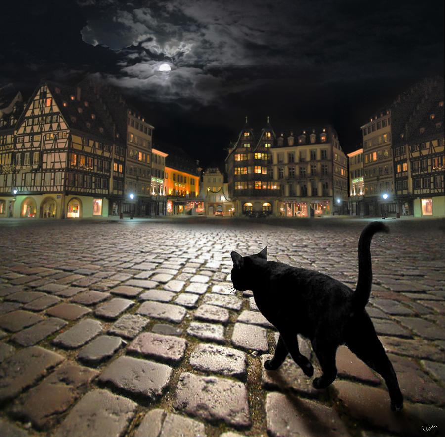 Strasburg Photograph - Strasbourgs Night by Igor Zenin