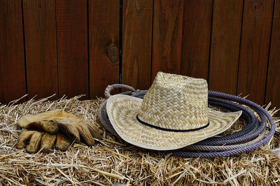 Paul Ward Photograph - Straw Hat  On  Hay by Paul Ward